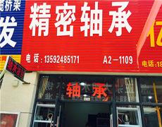 洛阳LYC轴承五洲城专卖店